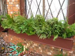 Bamboo Ideas For Decorating by Top Image Annual Flower Box Ideas Flower Bed Box Ideas Bathroom