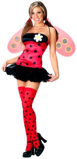 ladybug costume world women s lovely ladybug costume clothing