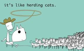 Herding Cats Meme - software projects and herding cats i saturn systems blog