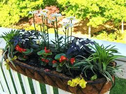 deck rail planter planters garden planter hanging over balcony