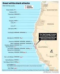Map Of Florida West Coast Beaches by Great White Sharks Swarm To Area In Summer Sfgate
