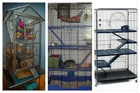 Cheap Rat Cage The Perfect Rat Cage U0026 Set Up Tinytailsandtoes