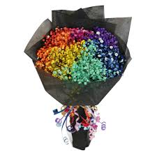 baby breath rainbow baby s breath 1 flower delivery singapore florist in