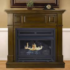 gas fireplace flames are blue home design inspirations