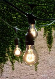 Edison Lights String by Bulbrite String15 E26 A19kt Nostalgic Edison Outdoor Garden