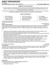 Resume Format For Sales And Marketing Manager Professionally Written Resume Samples Rwd
