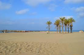 Marbella Spain Map by Best Beaches In Marbella Cabopino Beach