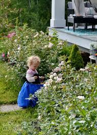 Summer Gardening - 2016 summer garden tour video the diy mommy
