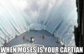 Cruise Ship Memes - cruise ship memes best collection of funny cruise ship pictures