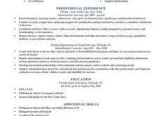 Sample Of Resume For Job Application by Sample Resume Formats Haadyaooverbayresort Com