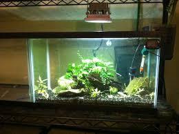 10 gallon planted tank led lighting flood light led s page 5 the planted tank forum