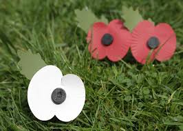 why we are selling white peace poppies for remembrance day