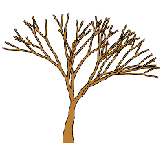 brown tree tree without leaves clipart many interesting cliparts