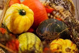 what is harvest thanksgiving harvest of peace celebration open sky eugene shambhala