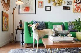 best sofa fabric for dogs best sofa fabrics for pet owners apartment therapy