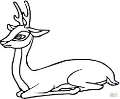 roe deer coloring free printable coloring pages