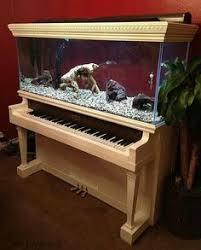 Fish Tank Reception Desk Wow I Love This Aquarium Idea Fishly Pinterest Aquarium