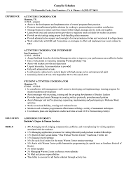 cv high student australia visa activities coordinator resume sles velvet jobs