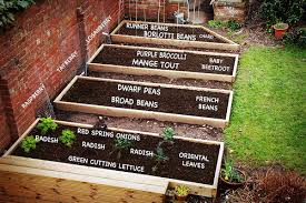 Garden Bed Layout Garden Plans 2010 Things We Make