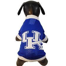 University Of Kentucky Home Decor Amazon Com Ncaa Kentucky Wildcats Athletic Mesh Dog Jersey