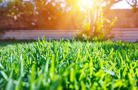 Three Brothers Landscaping by Lawn Care Tips Midurski Brothers Landscaping