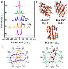 Whats Included In 96u by Review On The Raman Spectroscopy Of Different Types Of Layered