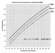 estimation fetal weight