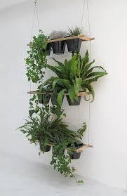 35 creative diy indoor herbs garden ideas ultimate 35 best plant stands images on pinterest house plants succulents