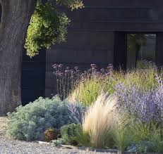 hotel in the environs of asti ornamental grasses and