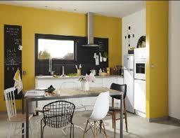peinture murs cuisine 11 couleurs cuisine avec une peinture murale tendance couleur