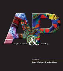 Human Anatomy Physiology Pdf Principles Of Anatomy And Physiology 13th Edition Tortora John