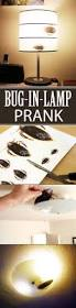 74 best april fool u0027s images on pinterest april fools funny