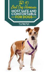 Four Paws Comfort Control Harness Best Dog Harness Huge Review Of 10 Pet Harnesses For Dogs 2017