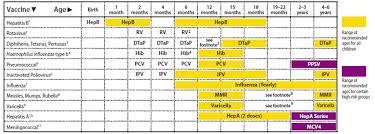 Vaccine Injury Table Part 3 A Beginner U0027s Guide To Vaccine Research U2013 Carolann Badass