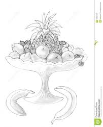 pencil sketches of fruits pencil sketchfruits and vegetables kpwms