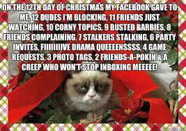 Grumpy Cat Memes Christmas - grumpy cat s 12 days of christmas grumpy cat cat and humour