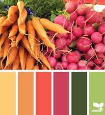produced hues design seeds color pallets and color inspiration