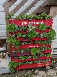 377 best green wall is in images on pinterest gardening