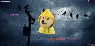 Doge Girl Meme - tired of the weather girl doge can tell you the weather forecast now