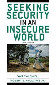 Seeking Book Pdf Pdf Ebook Seeking Security In An Insecure World Read Book