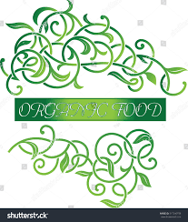 vector ornamental beautiful floral organic food stock vector