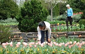 about duke gardens duke gardens