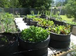 Recycling Ideas For The Garden Reed S Recycled Tire Container Garden