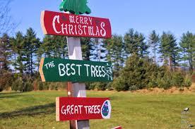 tonry tree farm