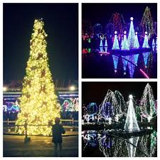 columbus zoo christmas lights winter festivities the columbus zoo wildlights travel with red roof