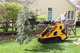 hoss tree removal tree trimming services batavia geneva st