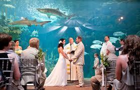 wedding venues in ta fl fl aquarium wedding wedding ideas 2018