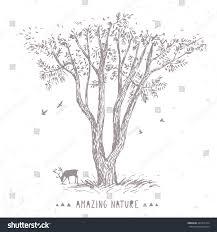 beautiful amazing pencil sketch tree stock vector 445412134