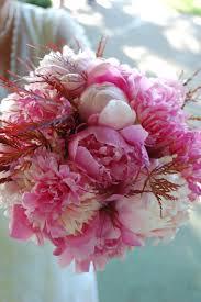 Wedding Flowers Peonies Fresh Cut Peony Bouquets For Marcys U0027 Wedding