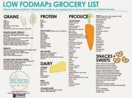 52 best ibs images on pinterest ibs diet fodmap recipes and